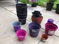 Plastic plant pots.