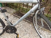 For Sale 3x Mountain bikes 2x ESCAPE PROBIKE 1x RALEIGH