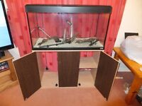 FISH TANK FLUVAL ROMA 200 LITRE WITH OAK CABINET IN EXCELLENT CONDITION LOTS OF EXTRAS