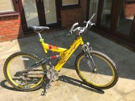 Adult Raleigh mountain bike