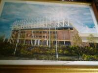Two stadium of light pictures