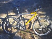 21 speed Claud Butler Mountain Bike (GREAT CONDITION)