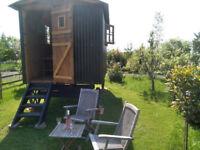 Lovely Shepherds Hut