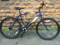 Raleigh FireFly Blue Large Mountain Bike