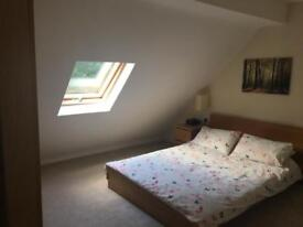 Double bedroom for rent/to let