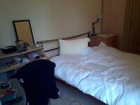 Double Room in Morningside