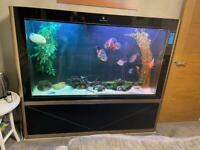 600l fish tank
