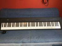 Korg SP200 fully weighted keyboard