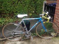 """Vintage retro Apollo europa 10 speed Road bike,51cm blue frame,26"""" wheels,weinman brakes"""