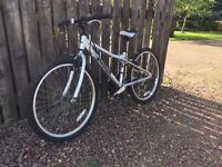 Dawes Child's Mid Sized Bike - One up from beginner's bike - 13 inch frame