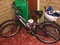 Girls bike Raleigh bike purple