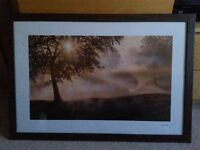 Large dark brown wood frame with trees in mist landscape print - Peter Walsh