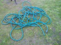 Green garden hose - approx 100 feet