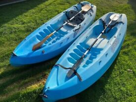 Pair of Ocean Kayaks with Paddles - Collection SO31