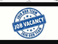 Recruitment assistant urgently wanted