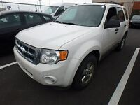 2012 Ford Escape XLT V6 MAGS ROOF LTHR COMING SOON