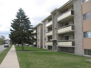 HWY 8 and Fergus Street – Beautiful 1 Bed Apartment! Kitchener / Waterloo Kitchener Area image 7