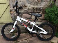 BMX bike age 8-10 Berwick-Upon-Tweed