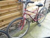 ladies apollo perpetual mountain bike, good condition, bargain £35, can deliver