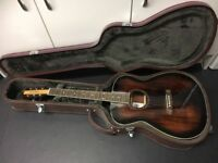 Acoustic Guitar with case - Tanglewood Nashville TNF-AV metal strung