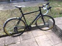 Carrera Zelos Road Bike (2013)