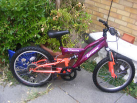 "RALEIGH GIRLS 20"" WHEEL BIKE IN GREAT CONDITION HARDLY USED AGE 7+"