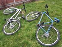Two adult mountain bikes (grey & blue)