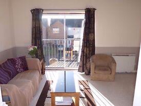 Linthorpe, Middlesbrough - 1 bed apt to let
