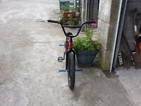 Dimond back BMX comes with 4 stunt pegs and spare maxxis tyre