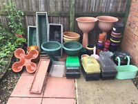 Free flower pots and seed trays