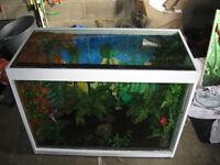 Large refurbished glass/wood terrarium