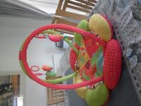 Baby Play activity gym