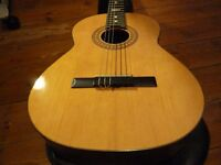 Spanish classical guitar - ideal for learners or indeed aspiring flamenco artists!