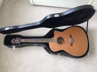 Acoustic Electro Guitar Solid Cedar Top LR Braggs Pickup