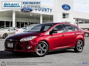 2014 Ford Focus SE - CLEAN CARPROOF!