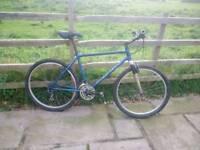 TITANIUM mountain bike