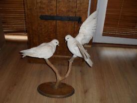 2 White Stuffed Doves