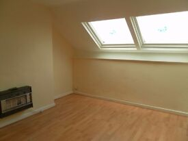 top fl 1 bed apt, close to city ctr, gch, d/glazing, by park, fit kit, unfurn, viewing recomended