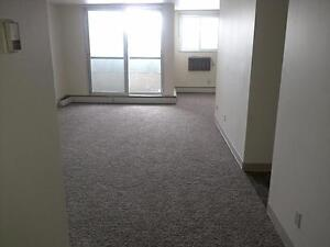 1 Bedroom -  - Parkview Place - Apartment for Rent Yorkton Regina Regina Area image 10
