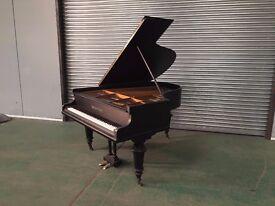 TESORO NERO CARBON FIBRE EFFECT - GRAND PIANO