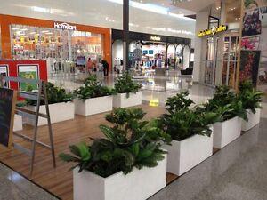 Artistic Greenery Malaga Swan Area Preview