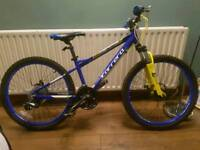 27 speed carrera kids mountain bike like new
