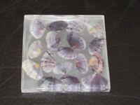 Sea Shell (large) Handcast Resinware Coasters (4x)