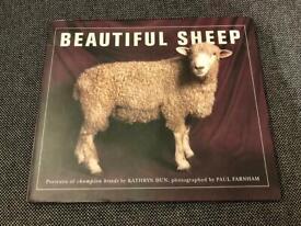 Beautiful Sheep Book
