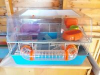 Hamster Cage (+Extras) Good Condition