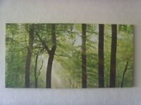 Forest Sunlight Large Canvas Print Picture
