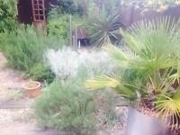 Cheap Garden Clearance & Landscaping Services, Local Gardener, Daily/Hourly Rates Competitive Prices