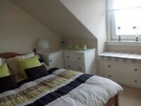 Spacious fully furnished one bedroom flat for rent