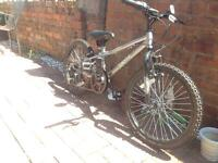 Apollo Spektor (Boys) Kids Bike