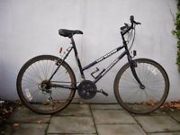 Ladies Mountain/ Commuter Bike by Professional, Black& Purple, Great Pub Bike! CHEAPEST BIKE !!!!!!